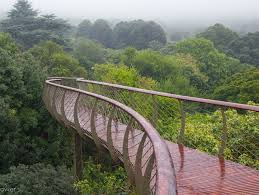 Kirstenbosch National Botanical Gardens by Kirstenbosch National Botanical Garden Cape Town Afar