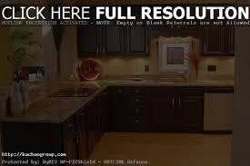 Brass Handles For Kitchen Cabinets by Endearing Kitchen Cabinet Knobs Rachel Schultz Black Vs Brass