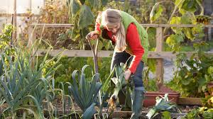 gardens leavenworth washington