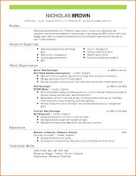 pdf of resume format best cv format pdf bio resume sles