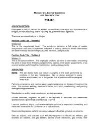 Job Description Nanny 100 Resume Sample Cook 100 Resume Bullet Points For