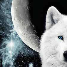 throw me to the wolves and i ll come back leading the pack that s