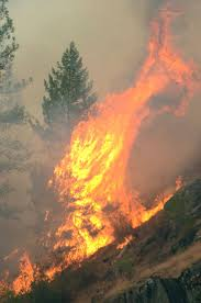 Wild Fires In Bc Right Now by Wildfires Ravage The West Coast Photos Abc News