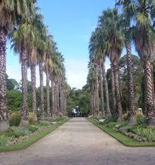 Williamstown Botanic Gardens Botanic Gardens