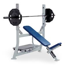 Life Fitness Multi Adjustable Bench Benches U0026 Racks Archives Life Fitness