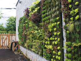 brilliant hanging garden wall 26 creative ways to plant a vertical
