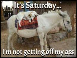 Working On Saturday Meme - happy saturday fit for fun fit for fun