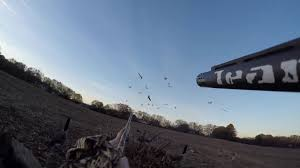 Rugged Outdoors Goose In South Carolina 2016 Gopro Team Rugged