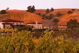 Bay Area Wedding Venues Clos Lachance Winery Wedding Venue San Martin Ca Bay Area