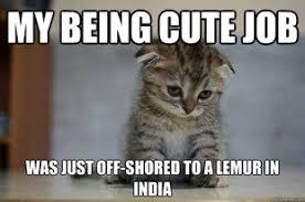 Sad Kitten Meme - sad kitten meme quickmeme critters pinterest