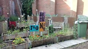 Community Gardens In Urban Areas Friday 7 August Pop Up Poetry Café At Digbeth Community Garden 6