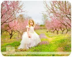 Backyard Photography Ideas Best 25 Peach Orchard Ideas On Pinterest Peach Trees Growing