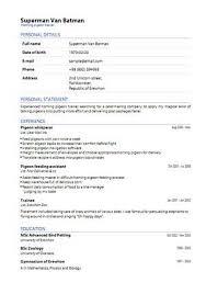curriculum vitae pdf download da compilare un curriculum vitae europeo un po di estetica please cocooa com