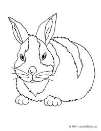 rabbits coloring pages farm animal coloring pages 55 free farm animals coloring pages