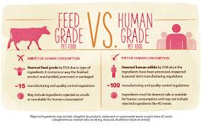 human grade dog u0026 cat food the honest kitchen