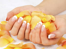 coupon nail salon san antonio nail salon 78232 van u0027s nails