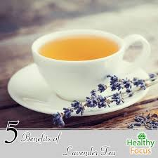 lavender tea 5 benefits of lavender tea healthy focus