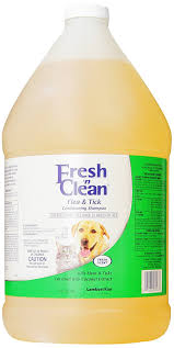 10 best flea killers for dogs fleas can create lot of problems
