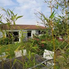 noirmoutier chambre d hote brin de palmier maison et table d hôtes chambres d hôtes à