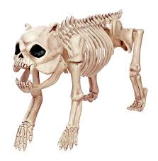 amazon com crazy bonez skeleton dog bonez the dog toys u0026 games