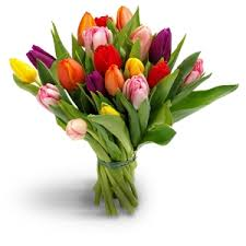 flower delivery reviews same day flower delivery by a local florist in belgium