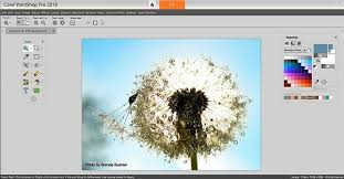 corel launches paintshop pro 2018 with improved editing tools and