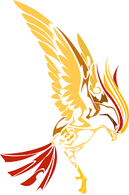 pidgeot car color pidgeot by newtoniannocturn on deviantart