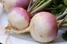 Chinese Root Vegetables - turnip wikipedia