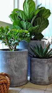 plant outdoor planters great ideas for modern with fresh