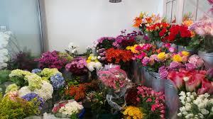 flower shops in mayflower flower shop the scoop dxb