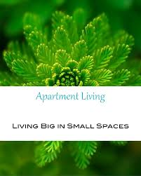 How To Live In A Small Space Just Because You Live In A Small Space Doesn T Mean You Have To