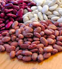 comment cuisiner les feves seches comment cuire les haricots secs rapidement sans trempage vous êtes