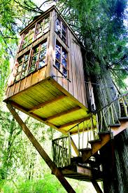 cool tree houses kids tree house designs margusriga baby party choose the best
