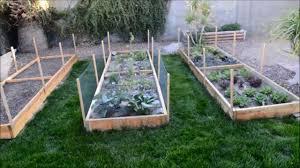 raised garden beds arizona gardening ideas