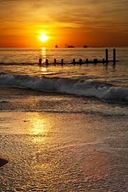 best 25 cape may beach ideas on pinterest nj shore new jersey