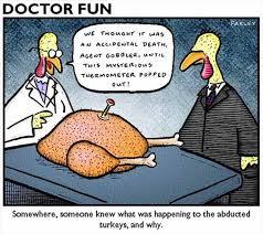 Best Thanksgiving Memes - funny turkey puns