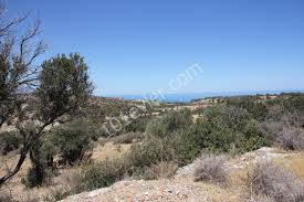 elexus hotel girne for sale plot kyrenia çatalköy north cyprus 52772 101evler com