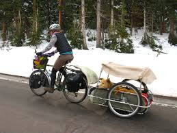 dogs on bikes cycling gypsies