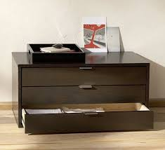 Map Drawers Cabinet Flat Files And Cabinets Apartment Therapy
