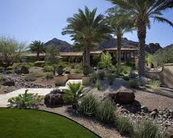 desert hillside landscaping ideas desert landscaping and some