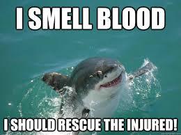 Shark Meme - misunderstood shark memes quickmeme