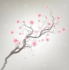 cherry blossom tree drawing background clipartxtras