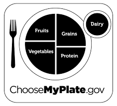 My Plate Worksheets Myplate Graphic Resources