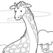 imagenes de jirafas bebes animadas para colorear dibujos para colorear bebe jirafa es hellokids com