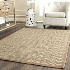 Sisal Outdoor Rugs The Best Picture Of Indoor Outdoor Sisal Unique Carpet Rug Pic For