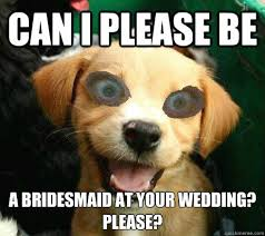 Meme Wedding - a bridesmaid at your wedding please funny meme picture