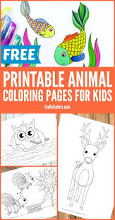 the 25 best animal coloring pages ideas on pinterest turtle