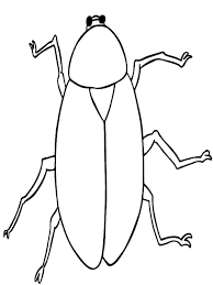 cockroach coloring page free cockroach online coloring in