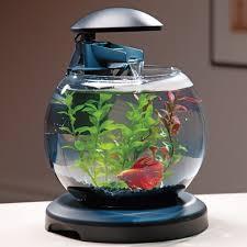 Betta Fish Decorations Desktop U0026 Nano Aquariums Tetra Waterfall Globe Aquarium