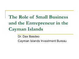 bureau entrepreneur the of small business and the entrepreneur